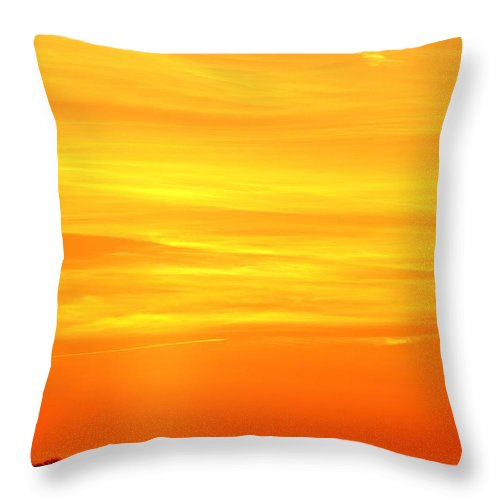 Abstract Throw Pillow featuring the photograph Flight Heading North by Lyle Crump