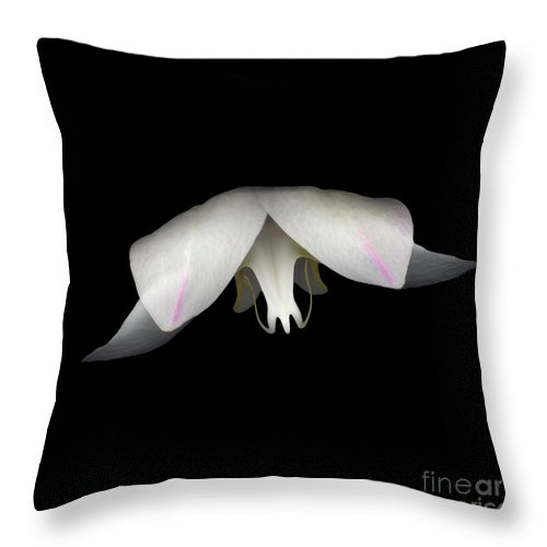 Flower Throw Pillow featuring the photograph Flight by Heather Kirk