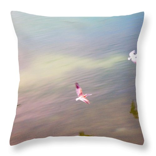 Pelicans Throw Pillow featuring the photograph Flight Impressions by Mal Bray