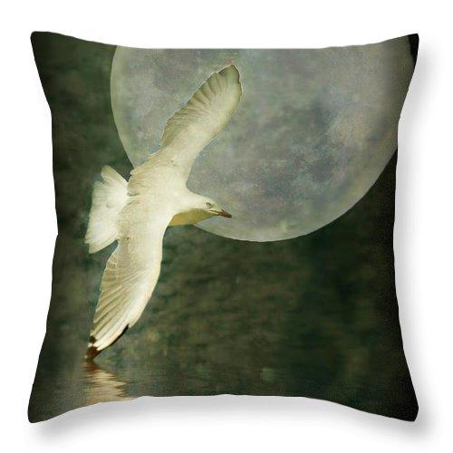 Art Throw Pillow featuring the photograph Flight by Kym Clarke
