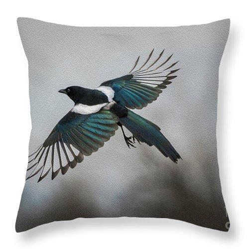 Magpie Throw Pillow featuring the digital art Flight Of A Magpie by Rick Taylor