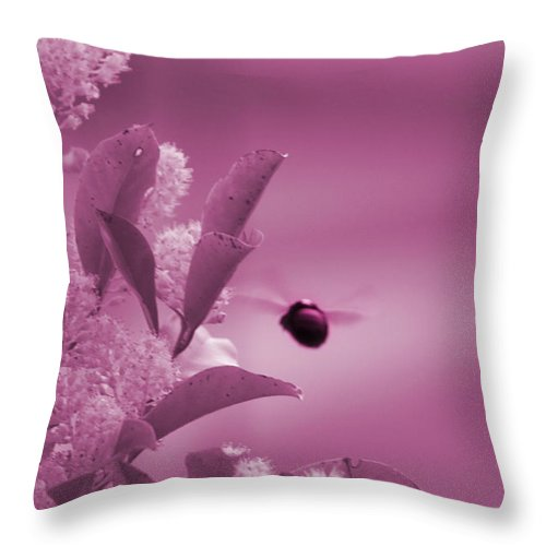 Pastel Pin Throw Pillow featuring the photograph Flight of Princess Bumble Bee by Colleen Cornelius