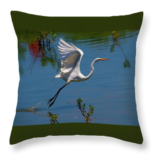 Throw Pillow featuring the photograph Floating by Tony Umana