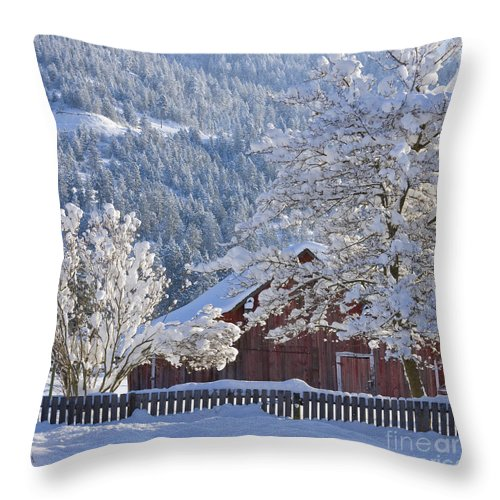 Flocked Throw Pillow featuring the photograph Flocked by Idaho Scenic Images Linda Lantzy