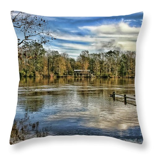 Alabama Throw Pillow featuring the photograph Floodwaters by Patricia Montgomery