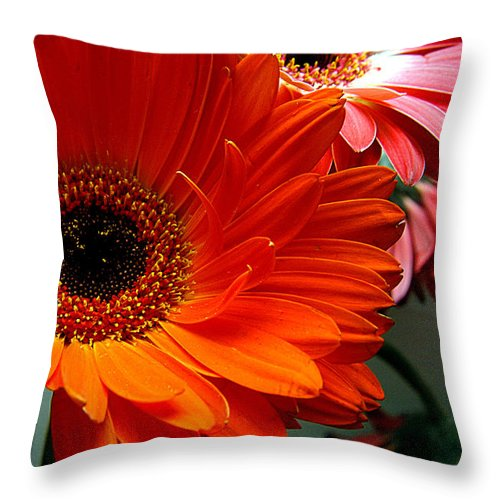 Clay Throw Pillow featuring the photograph Floral Art by Clayton Bruster