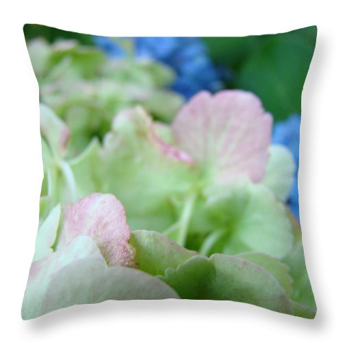 Hydrangea Throw Pillow featuring the photograph Floral Artwork Hydrangea Flowers Soft Nature Giclee Baslee Troutman by Baslee Troutman