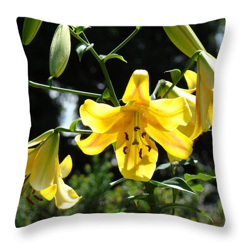Lilies Throw Pillow featuring the photograph Floral Lilies Art Yellow Lily Flowers Giclee Baslee Troutman by Baslee Troutman