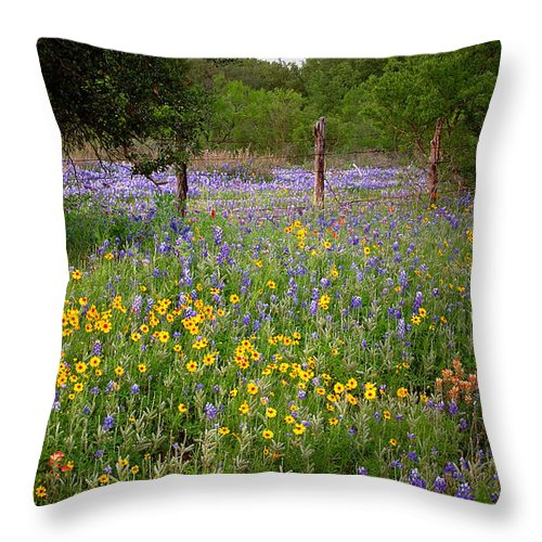 Landscape Throw Pillow featuring the photograph Floral Pasture No. 2 by Jon Holiday