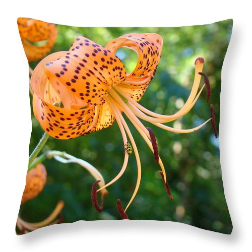 Lilies Throw Pillow featuring the photograph Floral Tiger Lily Flower Art Print Orange Lilies Baslee Troutman by Baslee Troutman