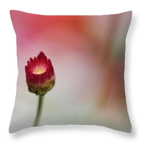 Red Throw Pillow featuring the photograph Floral Torch by Catherine Lau