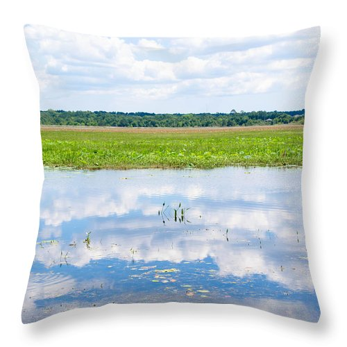 Reflaction Throw Pillow featuring the photograph Florida Beauty 2 by Andrea Anderegg