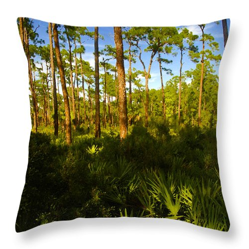 Pine Trees Throw Pillow featuring the painting Florida Pine Forest by David Lee Thompson