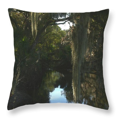 Florida Throw Pillow featuring the photograph Florida Swamp by Joseph G Holland