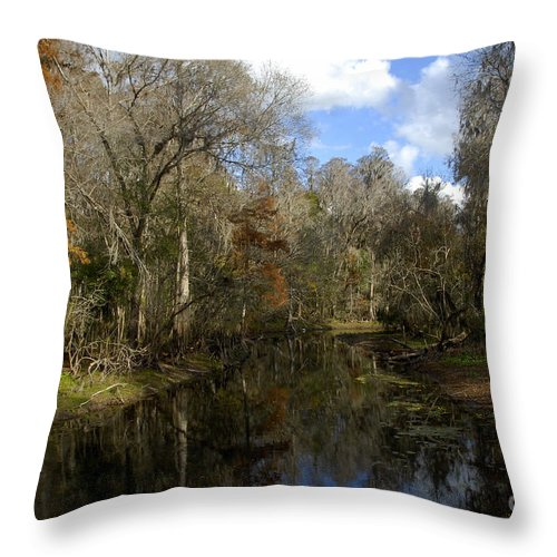 Wetlands Throw Pillow featuring the photograph Florida Wetlands by David Lee Thompson
