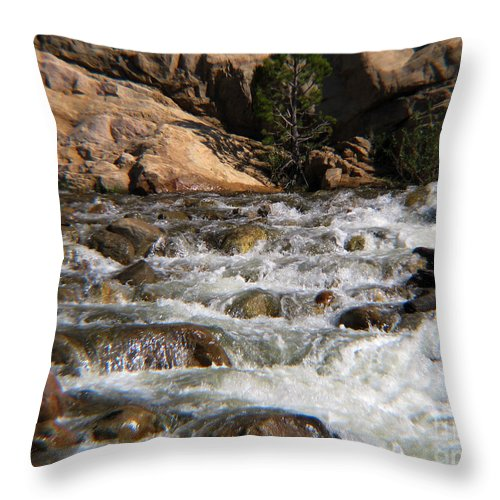 River Throw Pillow featuring the photograph Flow by Amanda Barcon