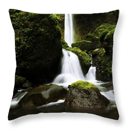 Northwest Throw Pillow featuring the photograph Flow by Chad Dutson