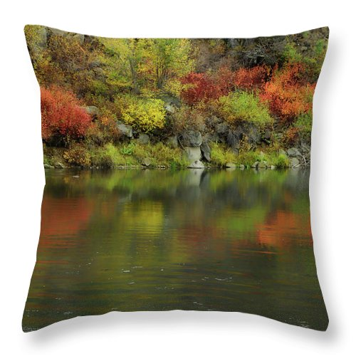 River Throw Pillow featuring the photograph Flow Of Autumn by Donna Blackhall