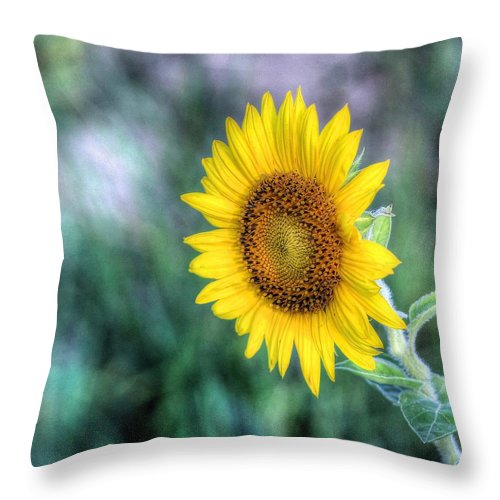#sunflower Throw Pillow featuring the photograph Flower #42 by Albert Fadel