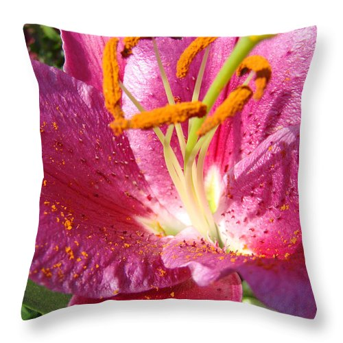Lily Throw Pillow featuring the photograph Flower Art Prints Pink Orange Lily Flower Giclee Baslee Troutman by Baslee Troutman