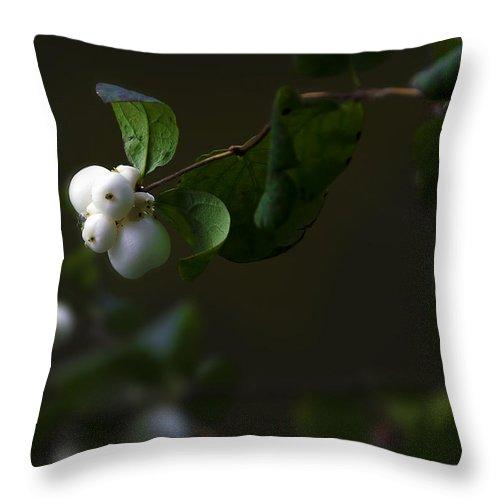 Botanic Throw Pillow featuring the photograph Flower Balls by Svetlana Sewell