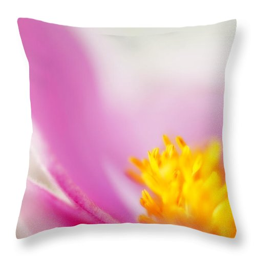 Flowers Throw Pillow featuring the photograph Flower Beauty by Silke Magino