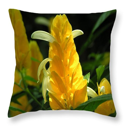 Flower Throw Pillow featuring the photograph Flower by Diane Greco-Lesser