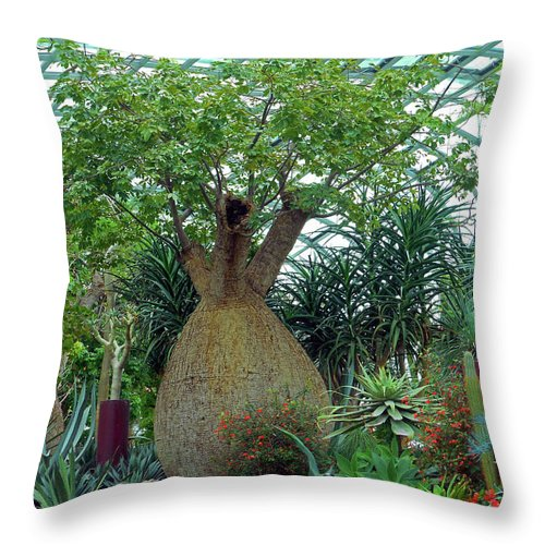 The Dooms Throw Pillow featuring the photograph Flower Dome 6 by Ron Kandt