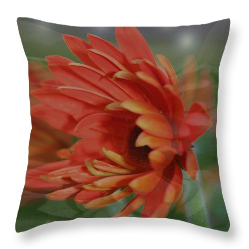 Flowers Throw Pillow featuring the photograph Flower Dreams by Linda Sannuti