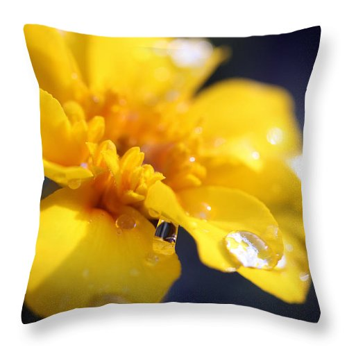 Flower Throw Pillow featuring the photograph Flower Droplets by Mary Haber