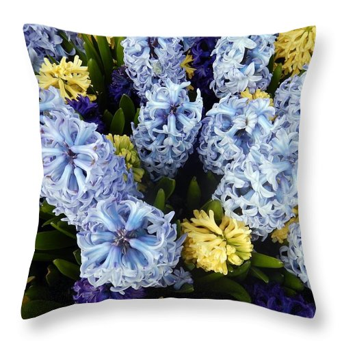Hyacinth Throw Pillow featuring the photograph Fragrance Of Spring by Jim Romo