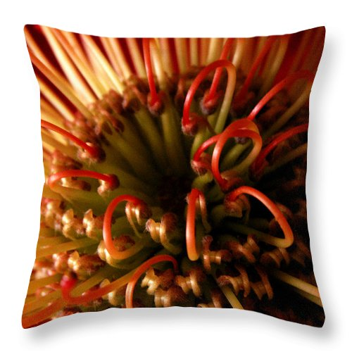 Protea Throw Pillow featuring the photograph Flower Hawaiian Protea by Nancy Griswold