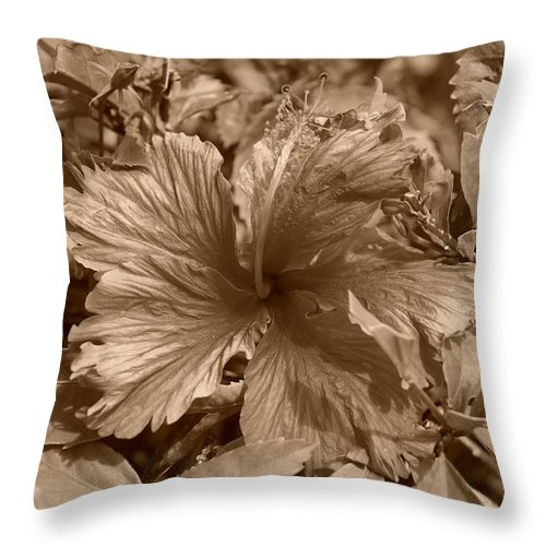 Sepia Throw Pillow featuring the photograph Flower In Sepia by Rob Hans