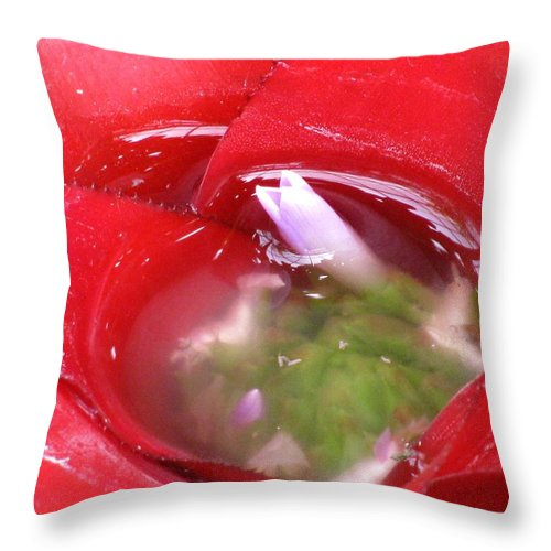Water Throw Pillow featuring the photograph Flower In The Water by Alfred Ng
