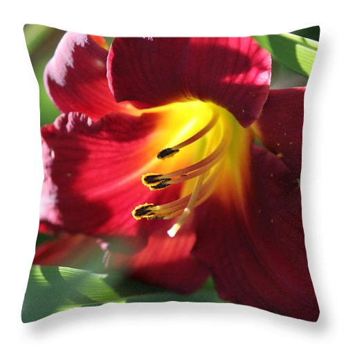 Nature Throw Pillow featuring the photograph Flower by Lisa Spero