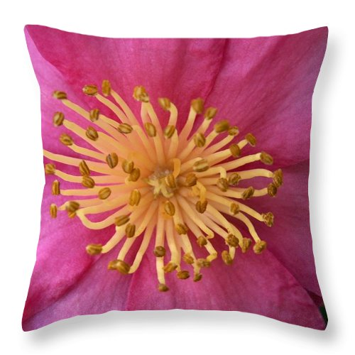 Flowers Throw Pillow featuring the photograph Flower Macro by Amy Fose
