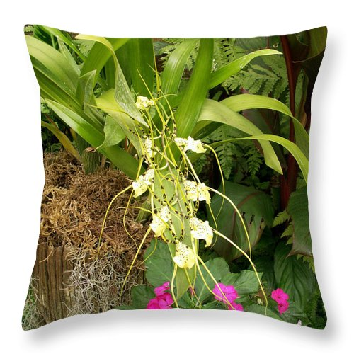 Flower Throw Pillow featuring the photograph Flower Mix by Amy Fose