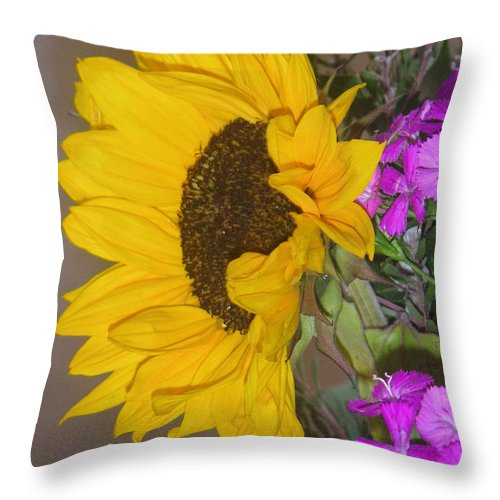 Nature Throw Pillow featuring the photograph Flower Of The Sun And Friends by Lucyna A M Green