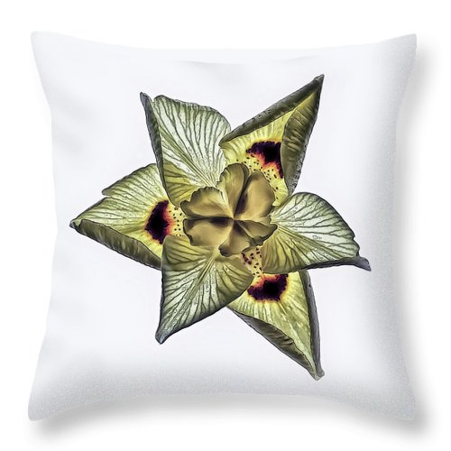 Flower Throw Pillow featuring the photograph Flower Of Triangles by Walt Foegelle
