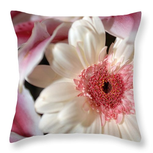 Flower Throw Pillow featuring the photograph Flower Pink-white by Jill Reger