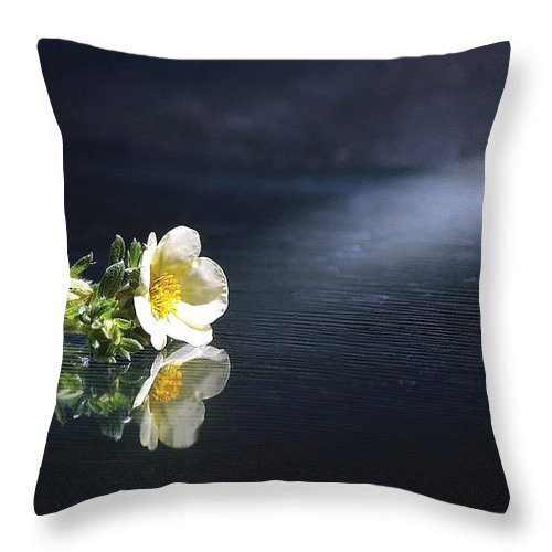 Flower Throw Pillow featuring the photograph Flower Reflection by Steve Somerville