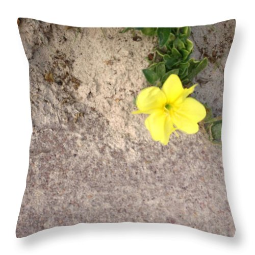 Throw Pillow featuring the painting Flower by Richard Benson