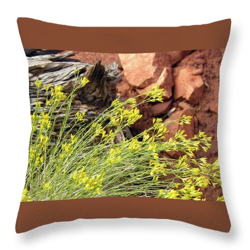 Flower Throw Pillow featuring the photograph Flower Wood And Rock by Marilyn Hunt
