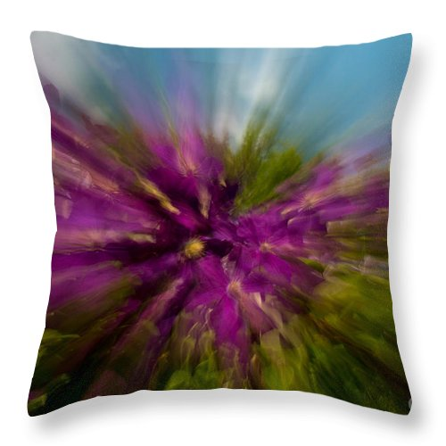 Clematis Throw Pillow featuring the photograph Flowering To The Sky by Aquadro Photography