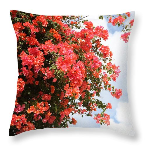 Hawaii Throw Pillow featuring the photograph Flowering Tree by Nadine Rippelmeyer
