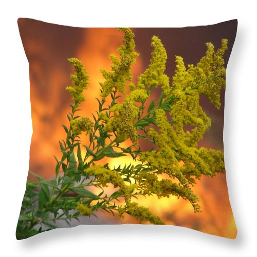 Flower Fire Flame Throw Pillow featuring the photograph Flowers And Flames by Luciana Seymour