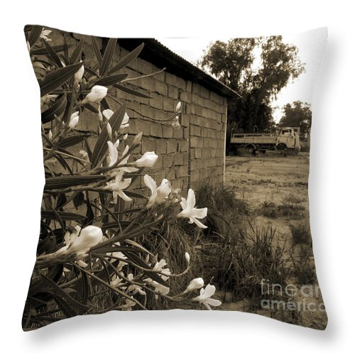 Iraq Throw Pillow featuring the photograph Flowers And Walls by Jeremy Berkheimer