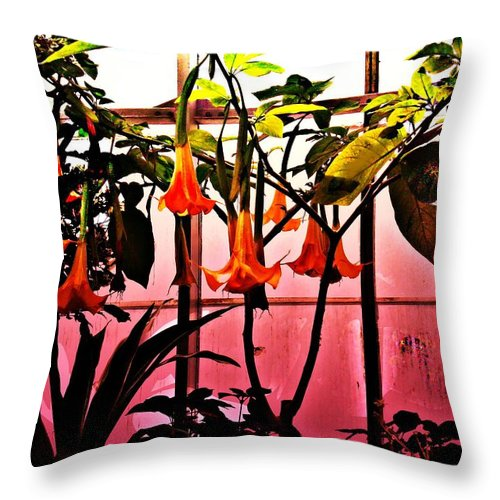 Flowers Throw Pillow featuring the photograph Flowers by Crystal Webb