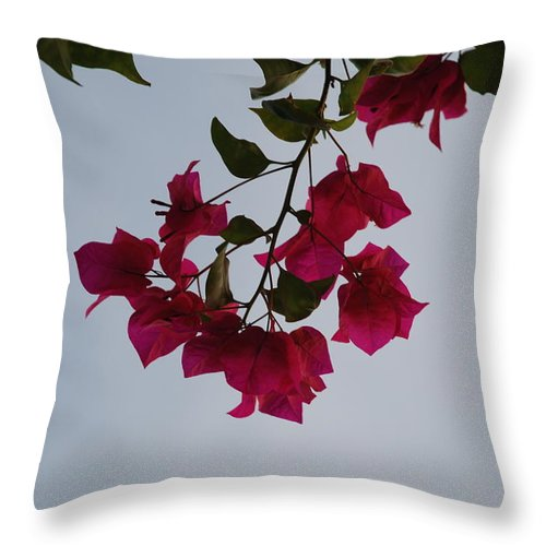 Flowers Throw Pillow featuring the photograph Flowers In The Sky by Rob Hans