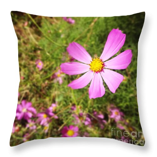 Washington Park Throw Pillow featuring the photograph Flowers In Washington Park by Korynn Neil